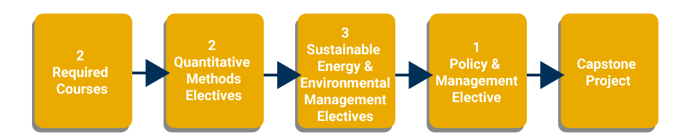 Flow chart of the MSEEM curriculum: 2 required courses: Economics of Environmental Policy and Sustainable Energy and Environmental Management Policy; two quantitative methods electives, three Sustainable Energy and Environmental Management electives, one Policy and Management elective, and Capstone Project.